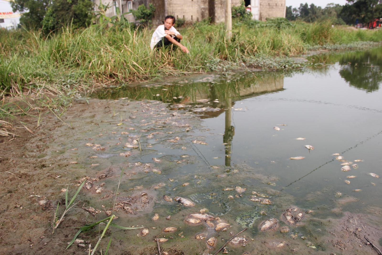 Khu công nghiệp chưa có nhà máy xử lý nước thải