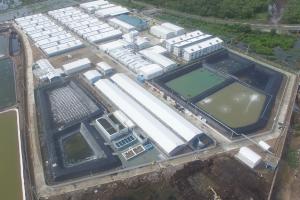 Nghiệm thu, bàn giao đưa vào sử dụng công trình Xử lý nước thải tại trại nuôi tôm giống Công Ty Cổ Phần Chăn Nuôi CP Việt Nam - chi nhánh Kiên Giang